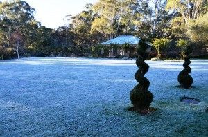 frost on the front lawn